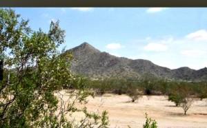 mt-vista-ranch-lot(2)