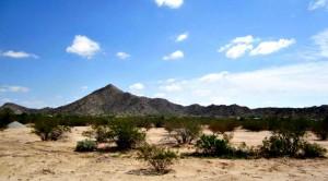 mt-vista-ranch-lot(7)